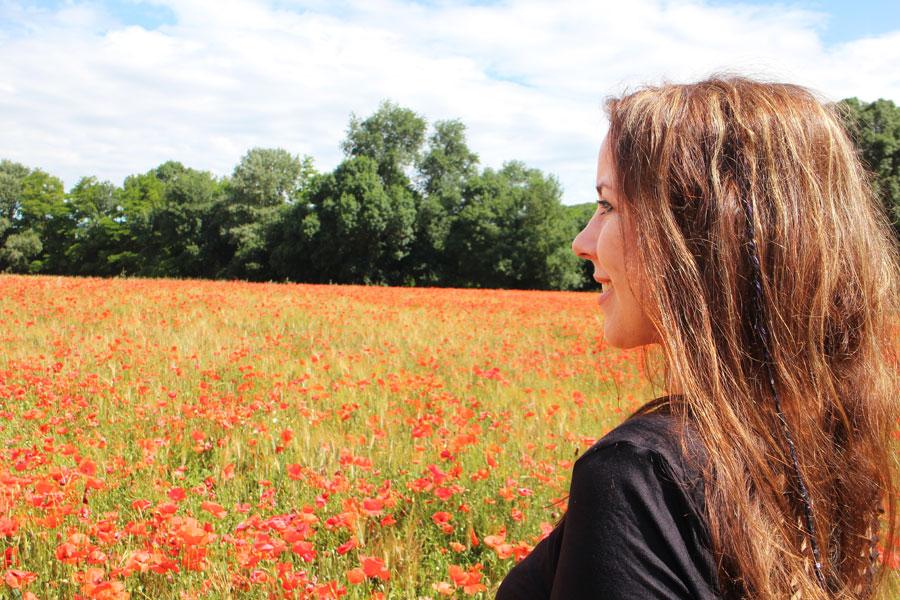 Eilera blog Emily Dickinson poppy field